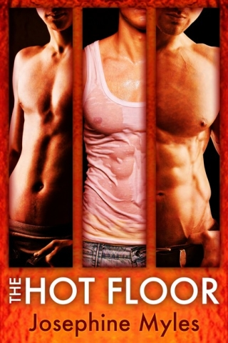 The Hot Floor by Josephine Myles, art by Lou Harper